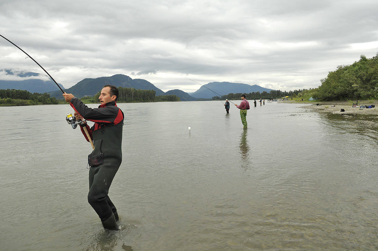Demonstration Fishery Saturday Near Chilliwack To Demand