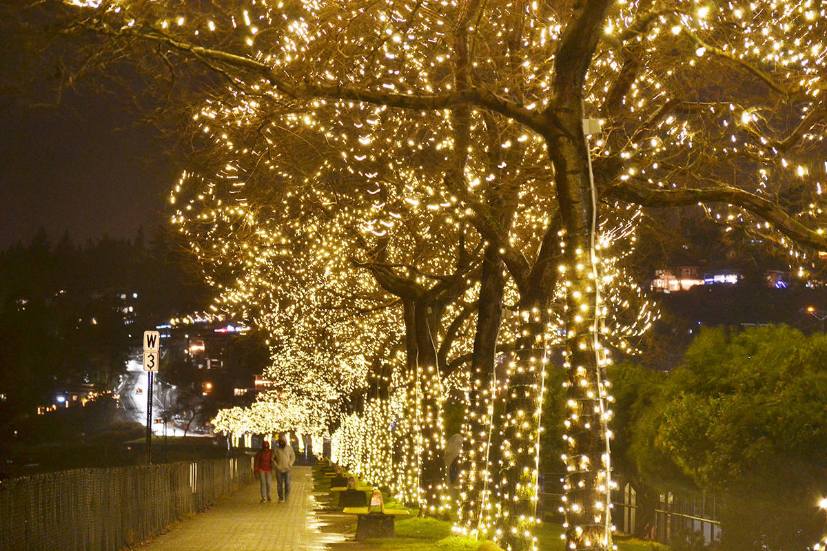 White Rock Promenade Tree Lights To Be