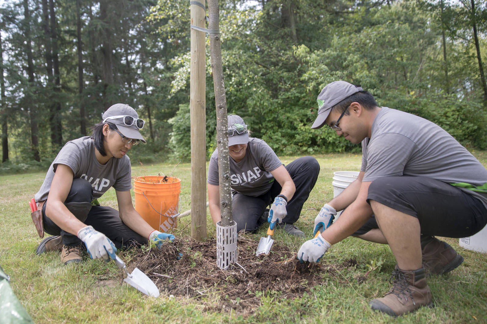Youth volunteers improve South Surrey's Chantrell Creek Park