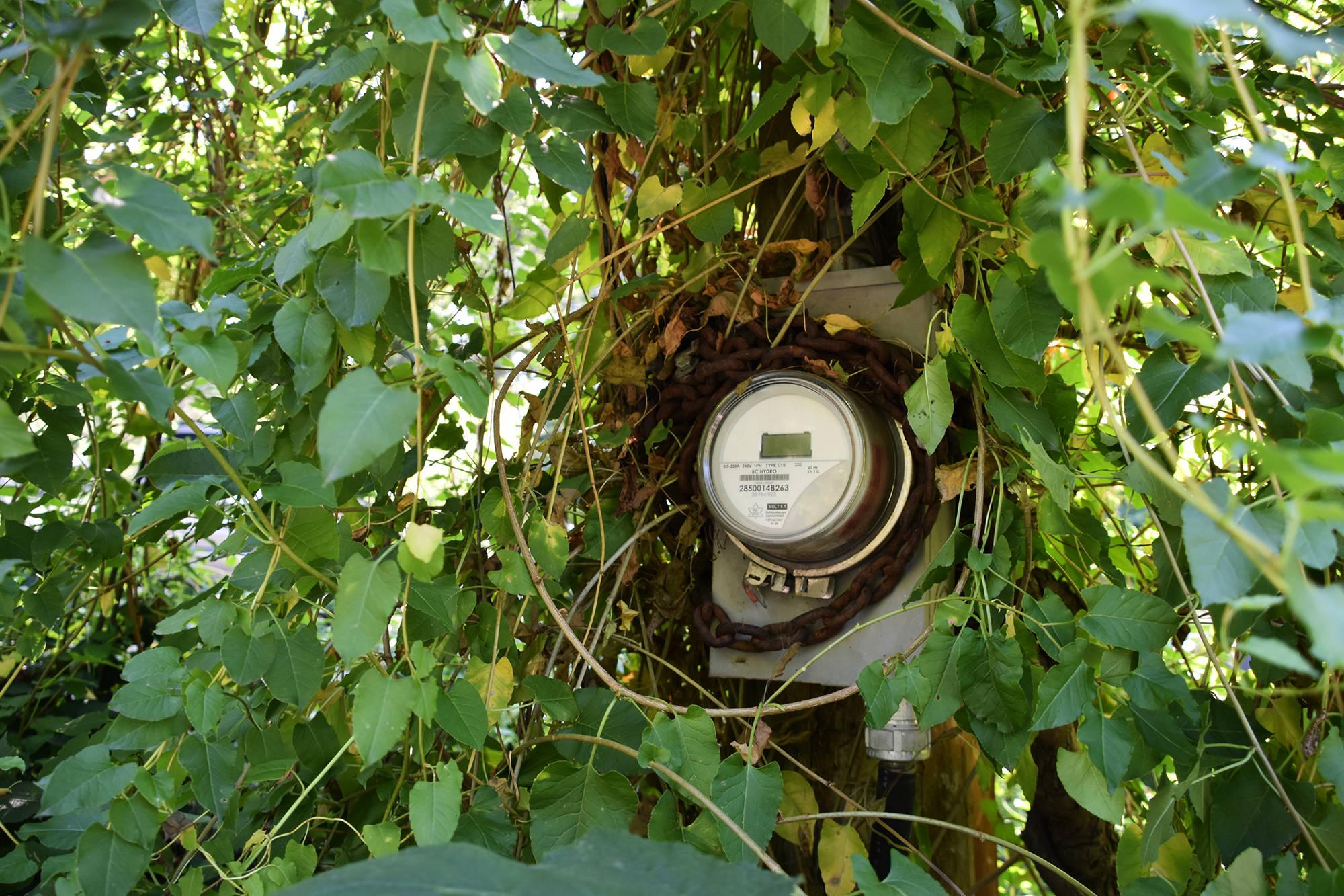 South Surrey man allows smart meter installation 'under duress'