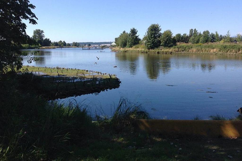 Surrey awards $1M contract for Nicomekl park design - Peace Arch News